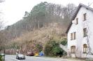 17.03.17-Zh-Baerenbach#295A26
