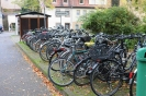 14.10.21-Ziegelhausen#276CA