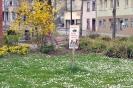 16.04.02-Ziegelhausen#34A4D