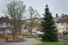 Ebertplatz Weihnachtsbaum 12.11.2015