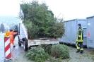 Feuerwehr sammelt Weihnachtsbäume - Sammelstelle - 12.01.2019