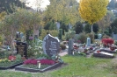 18.11.02-ZH Friedhof #4A8BB