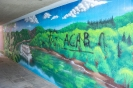 20.06.25-Zh-Grafitty-1-alex-1