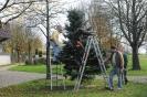 14.11.15-Ziegelhausen We#4E