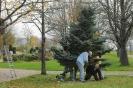 14.11.15-Ziegelhausen We#4F