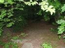 durch Bezirksforstamt am 10.06.15 gereinigte Grillhütte Geigersheide + Gelände (6)
