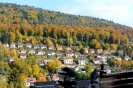 15.10.26-Ziegelhausen#306DD