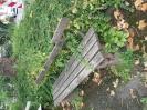 Zustand kleiner Platz am alten Friedhof am 24.06 (1)